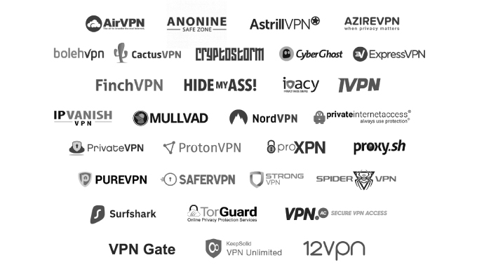 Brume-W supports 30+ VPN Services