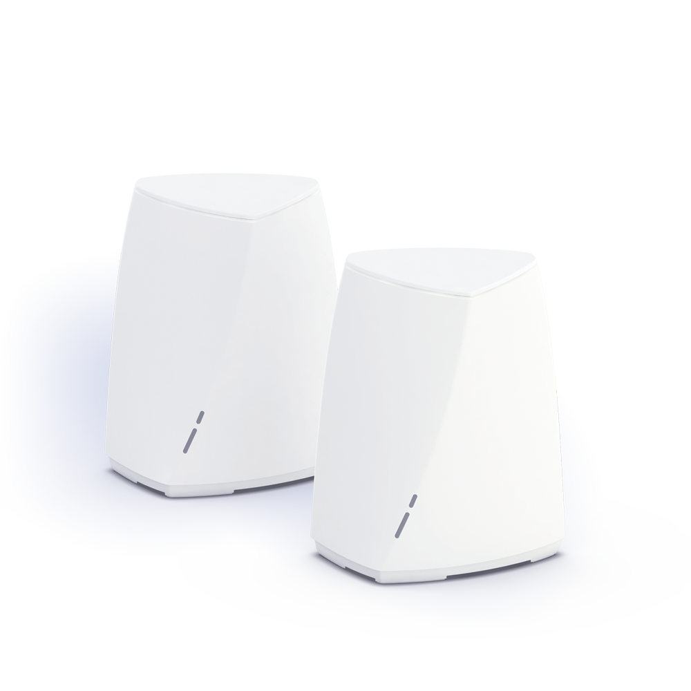 Mesh network with two routers
